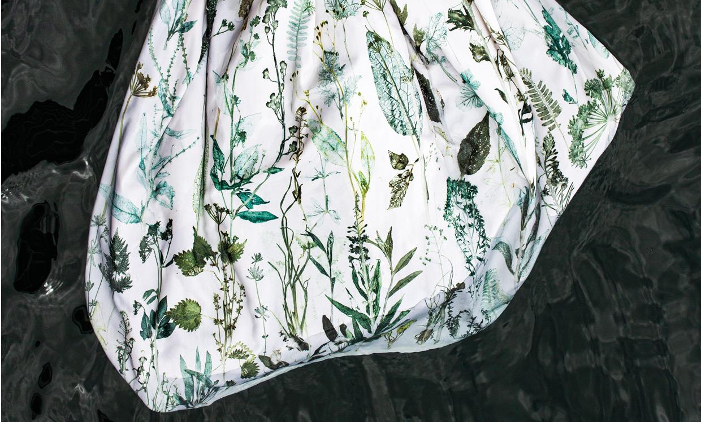 Von Linné Billede 2